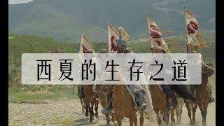 西夏國力不如遼金和北宋南宋,爲什麽卻能存在190年?