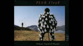 Shine on you crazy diamond-Delicate sound of thunder-Pink Floyd