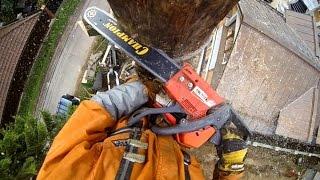 Удаление деревьев в сильный ветер. Арбористы!(, 2015-01-04T08:36:22.000Z)
