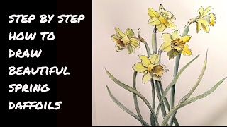 How to Draw a Dance of Daffodils at MIMI
