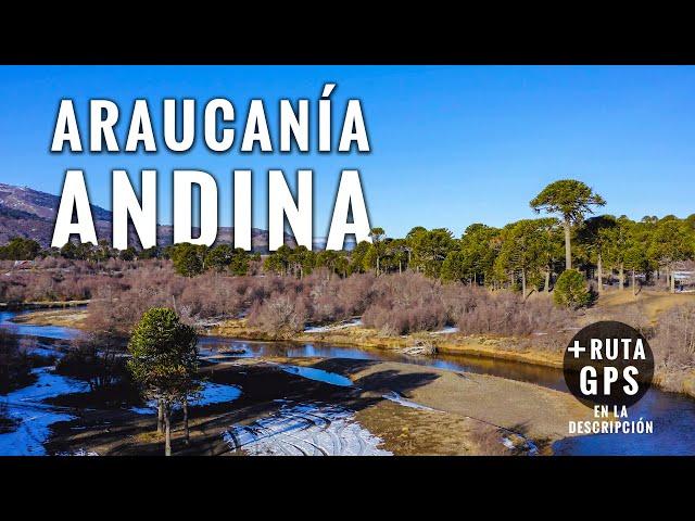 Araucanía Andina desde el aire en 4K: Quinquén - Lonquimay, Chile