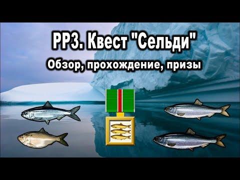 """Русская рыбалка 3. Квест """"Сельди"""". Обзор, прохождение, призы."""