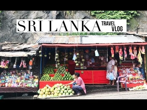 Sri Lanka Travel Vlog: Food, Weddings, Sight Seeing | The Gracious Life