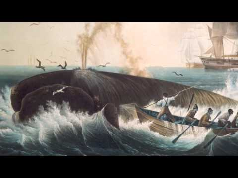 Leviathan - The History of Whaling in America