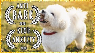 BICHON FRISE Chakra Healing Music For Dogs | Dog Separation Anxiety Music