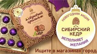 Сибирский кедр исполняет желания