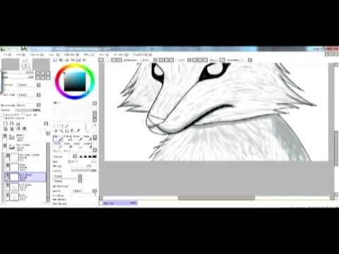 [Paint Tool SAI Speedpaint] - Wolf fur coloring etc. - YouTube
