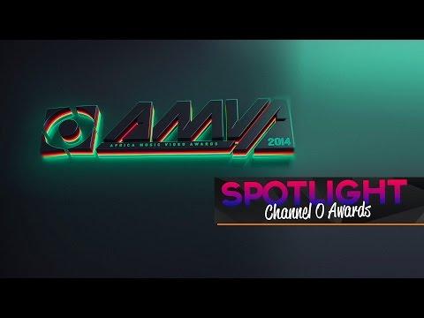 Spotlight - ChannelO AMVA 2014