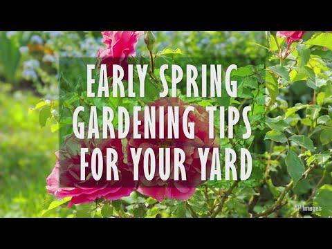 Early Spring Gardening Tips
