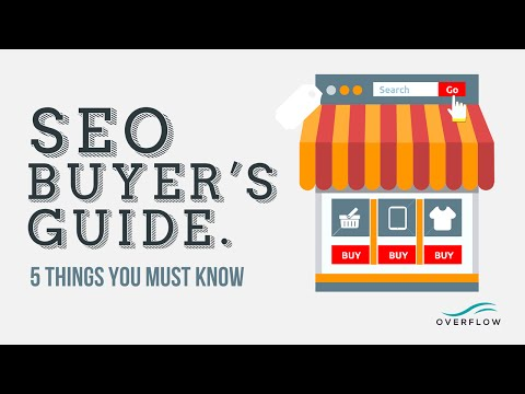 Michigan SEO Company - Search Engine Optimization Buyer's Guide