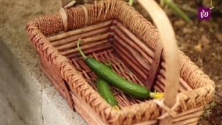 م. أمل القيمري - الخضراوات الصيفية