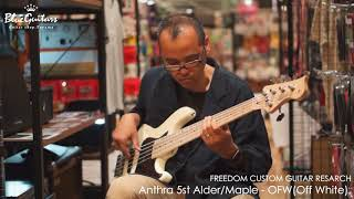 FREEDOM CUSTOM GUITAR RESEARCH / Anthra 5st Alder/M - OFW(Off White...