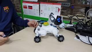 Обзор робот собака WOWWEE Chip
