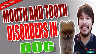 Mouth and Tooth Disorders in Dog | MasterVet