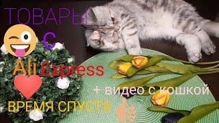Обзор товаров с AliExpress спустя какое то время видео с кошкой