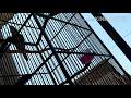 Burung Cucak Keling Trotol Udah Gacor Dor  Mp3 - Mp4 Download