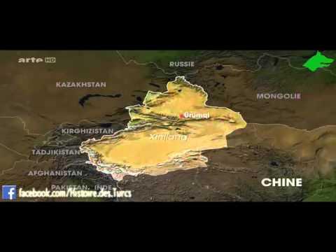 Occupation et épuration ethnique au Turkestan Oriental