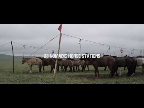 All The Wild Horses - Music by Tengger Cavalry