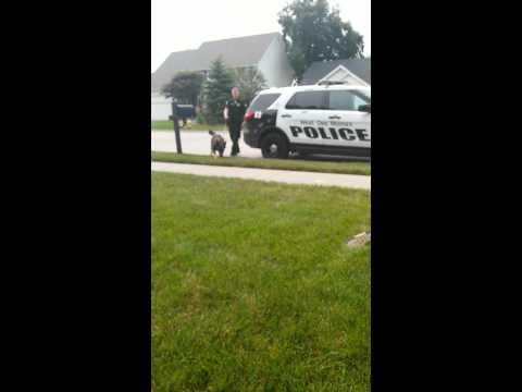 WEST DES MOINES POLICE DEPARTMENT and K9 ARO stop to play with KIDS