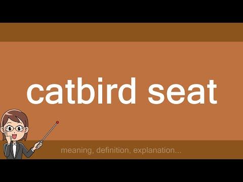 catbird seat - YouTube