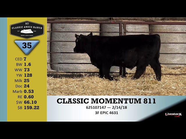 Classic Angus Ranch Lot 35