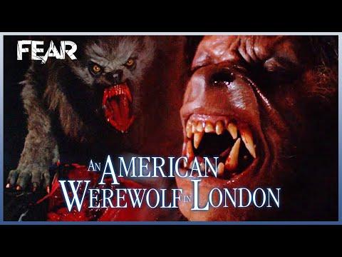 Death Count   An American Werewolf In London (1981)