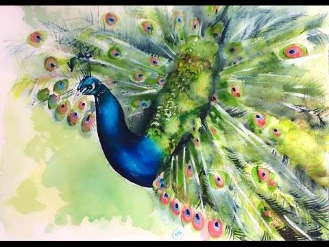 Watercolor Peacock Painting Demonstration - YouTube