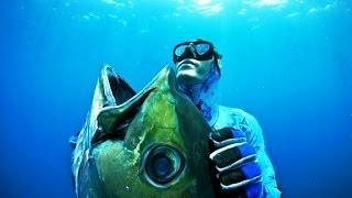 Benvenuto sul canale del pescatore in apnea, il canale su YouTube c...
