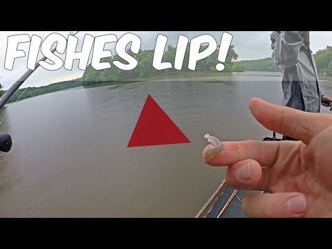I Literally Ripped The Fish's Lip Off...Tournament #6 Fishing With A Ringer