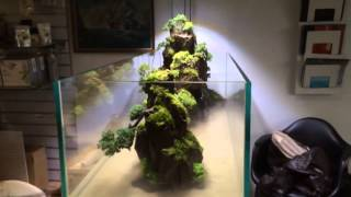 Exotic Aquatic Australia Penjing Waterfall Aquarium