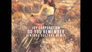 Joy Corporation - Do you Remember (Vintage Culture Remix)