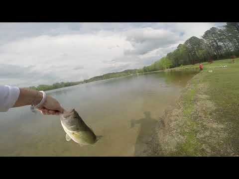 SPAWN BASS FISHING-RANKIN LAKE NC