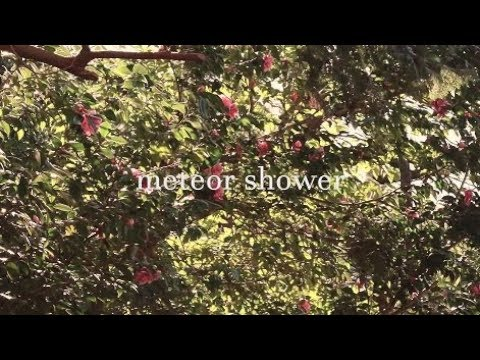 Sandi gray eyes - meteor shower【MV】