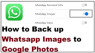 How to Back up Whatsapp Images to Google Photos