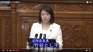 参議院本会議・法務委員長報告(2019/11/22)