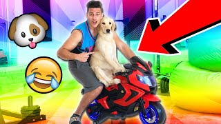 *SURPRISE* POWER WHEELS MOTORCYCLE TOY UNBOXING FOR PUPPY!