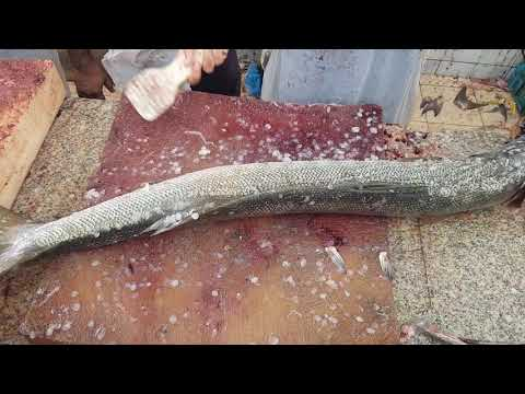 Barracuda Fish Cutting And Skinning At Fish Market।$200 Barracuda Fish Fillet Skills।Fish Fillet