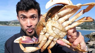 Catch and Cook: DELICIOUS Dungeness Crab on the Rocks!!