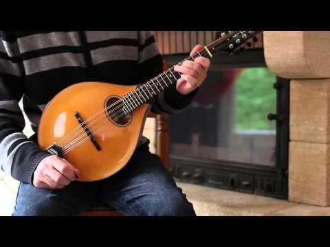 Irish mandolin lessons. The musical priest (Irish reel)