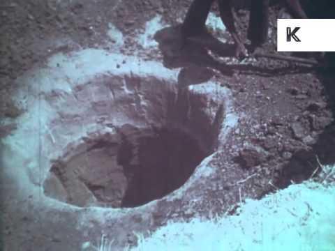 1960s, 1970s Kalahari Desert, Digging a Well, Africa