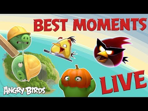 Angry Birds Best Moments LIVE! 24/7 🔴 | Angry Birds