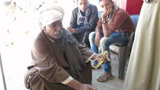 حاوي الثعابين في أبيدوس snake from abydos