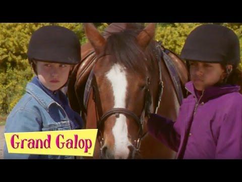 Grand Galop - Bienvenue au club et Sauvetage | Grand Galop Saison 1