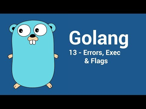 [Go/Golang] 13 - Error, Exec() & Flags
