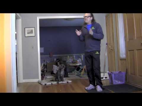 Bad Greeter Oscar- Solid K9 Training