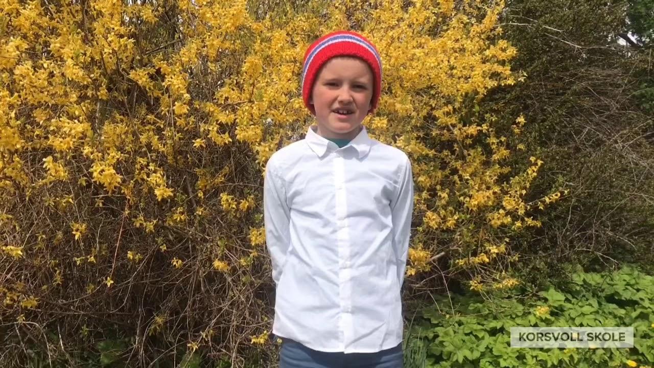 17. mai 2020 | Korsvoll skole