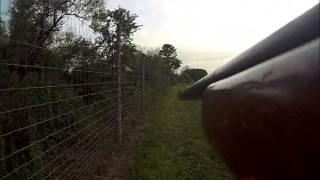 Rabbit hunting Farm in Bucks County Pa