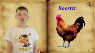 English lesson  №16 Animals Урок английского языка. Животные.