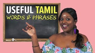 Basic Tamil Words & Phrases You...