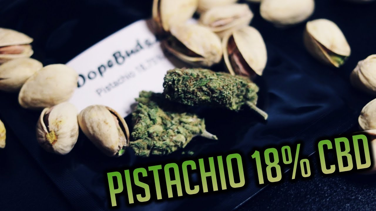 PISTACHIO 18% CBD | UK LEGAL WEED | Dope Buds